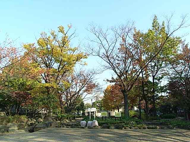 秋のてんとう虫公園